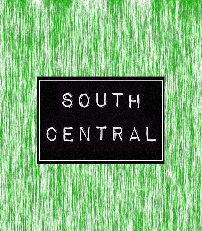 SOUTH-CENTRAL-COLUMN